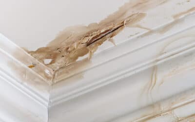 What Do I Do When My Roof is Leaking?
